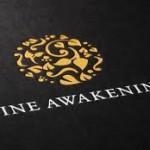 Wine Awakenings